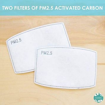 PM 2.5 FILTER ~ ACTIVATED CARBON ~ Set of 2