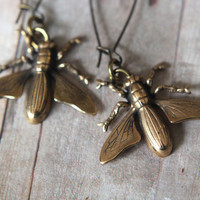 Horsefly Earrings - Fly Guy Dangles - Antiqued Gold Brass - Insects, Bugs, Natural History - Summer Fashion
