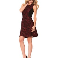 Laundry By Shelli Segal Sleeveless Brocade Fit and Flare Dress