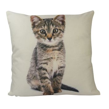 Cat | Calico Cat | Cat Pillow | Cute Cat | Cat Gifts | Cat Decor | Cat Photo | Gifts for Cat Lovers | Accent pillow | Throw Pillow Covers