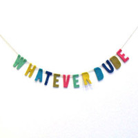 Whatever Dude Felt Party Banner in Multicolor