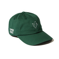 Green Cactus Embroidered Baseball Cap Hat