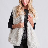 All I Need Faux Fur Vest
