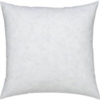 """20x20""""- Square Feather Down Pillow Insert"""