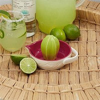TWO'S COMPANY CACTUS CITRUS REAMER JUICER