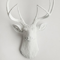 Faux Deer Head - Faux Taxidermy - The Templeton - White Resin Deer Head- White Deer Antlers Mounted- Faux Head Wall Mount