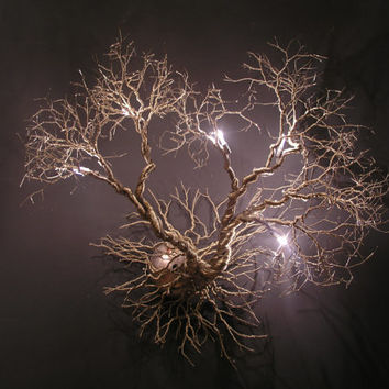 Roots, Wall fixture.Handmade Wall  Light made of pewter wires.