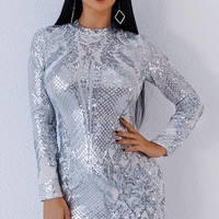 Ania Sequin Dress