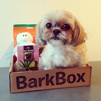 BarkBox Monthly Subscription on the redditgifts Marketplace