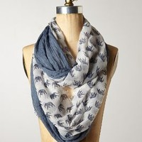 Surin Scarf by Anthropologie Blue One Size Scarves