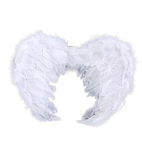 Angel Wings Stage Fancy Dress Fairy Feather Outfit Costume