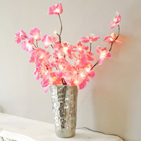 Butterfly Orchid Light, New Finds | Graham and Green Lighting