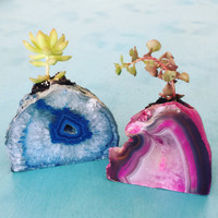 Agate Planters for small plants a succulents - All colors available