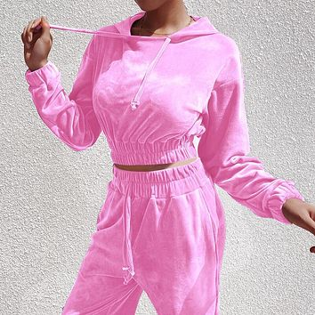 New fashion autumn and winter velvet hooded long sleeve sweater top and pants two piece suit Pink
