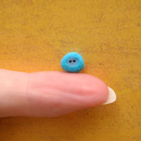 Blue Baby Pygmy Puff: Super cute and ready to be adopted (from the world of Harry Potter)