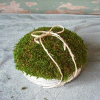 Birch & moss ring bearers pillow for your nature themed wedding. | NHWoodscreations - Wedding on ArtFire