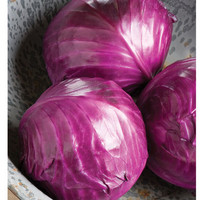 Ruby Perfection Cabbage Seeds (Brassica oleracea var. capitata) + FREE Bonus 6 Variety Seed Pack - a $30 Value!