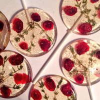 3 Natural cranberry flavored lollipops with dried sweetened cranberries and organic thyme sprigs