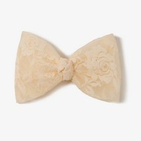 Oversized Lace Bow Barrette