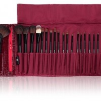 SHANY Cosmetics NY Collection Pro Brush Kit, 13 Ounce (22 Piece Mix Natural and Synthetic with Burgundy Faux Crocodile Case)