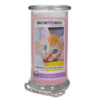 Happy Birthday To Our Favorite Crazy Cat Person!   Jewelry Greeting Candle