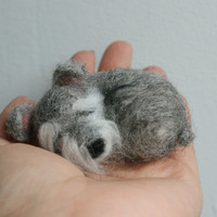 needle felted sleeping little schnauzer brooch ,pin,doll house decoration.