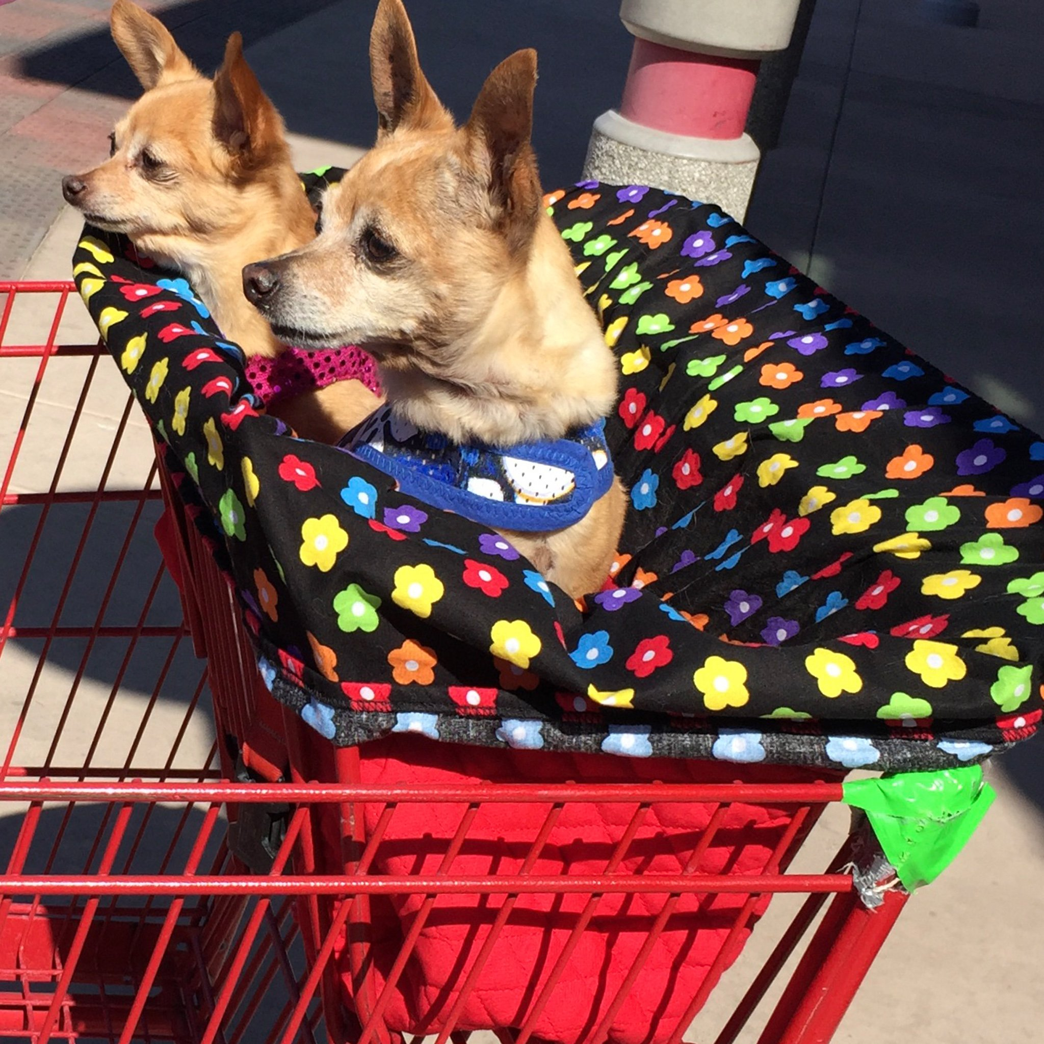 Image of Shopping Cart Liner for Dogs