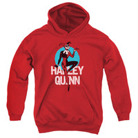 BATMAN THE ANIMATED SERIES/SMOOTH-YOUTH PULL-OVER HOODIE-RED