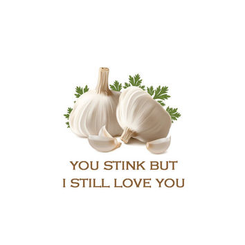 You Stink but I Still Love You, Funny Love Cards, Humorous Birthday Cards, Humorous Annniversary Cards, Funny Valentine Card,
