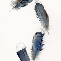 """watercolor feathers, feather art -Blue Jay Feathers - 13 x 19"""" Archival print, minimalist, blue, bird feathers, natural home decor"""