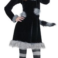 Fun World Sweet Raccoon Teen Costume, Black,Junior (0/9)