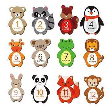 12 Pcs Month Sticker Baby Photography Props Card Photo Newborn Monthly Memorial Accessories Number Kids Milestone Commemorative (12pcs)
