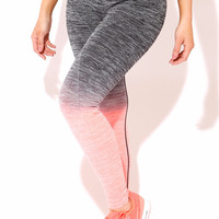 Sports Tight Coral and Gray