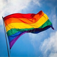 New Rainbow Flag 3x5 FT Polyester Flag Gay Pride Peace Flags 90cm x 150cm HXP001