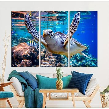 Turtle and Ocean Life Wall Art Canvas Print