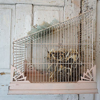 Faded pink birdcage shabby cottage chic bird cage with handmade bird nest French Nordic handmade eggs millinery flowers anita spero design