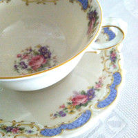Vintage Bavaria Schwarzenhammer Tea Cup and Saucer/Cottage Style Tea Party