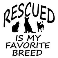 Pet Rescue Decal Dog Cat Vinyl Mirror Window Truck Car Vehicle 7x7 or 10x10 Rescued Is My Favorite Breed