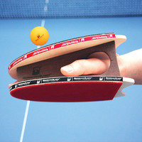 The Table Tennis Hands