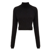 Ella Sparkle Crop Turtle Neck