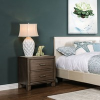 Wolson Contemporary 2-Drawer Nightstand in Gray