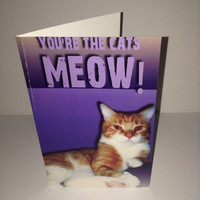 GREETING CARD- you're the cats meow