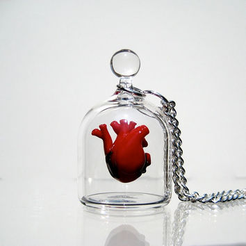 Anatomical Heart Jewelry - Necklace - Heart in a Jar