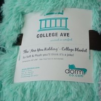 The Are You Kidding? Blanket - Twin XL (Calm Mint)