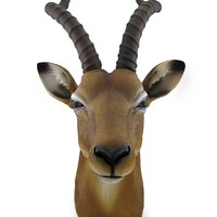 African Antelope Head Bust Hanging Wall Sculpture