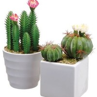 Silk Plants Direct Cactus (Pack of 3)