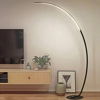 LED Black and White Arched Floor Lamp