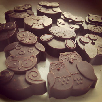 Raw Chocolate Owls with Nut Butter Filling! (100g) Choose your flavour!