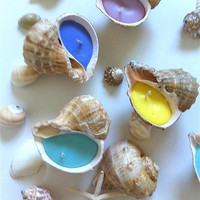 Christmas Gift Set of 4pcsHandmade Seashell Scented Candles Colorful Candles Beach Decor Home Wedding Party Decor Canada