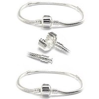 Two Silver Plated Charm Bracelets - Pandora Charms & Beads Compatible